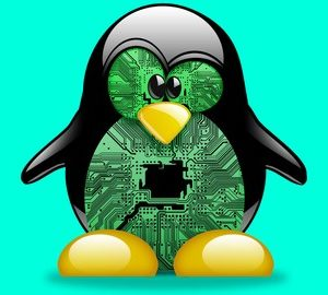 The Perfect Linux Server for Web