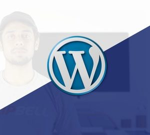 Complete Custom Wordpress Website Freelancer in 2017