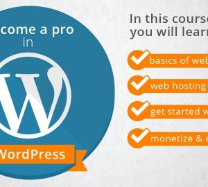 The Perfect Guide to become a Pro in WordPress