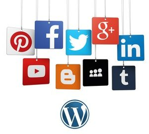 WordPress Social Media Automation