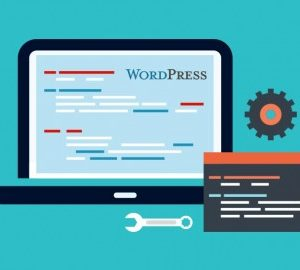 WordPress plugin business & marketing WordPress plugins