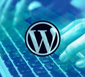 Wordpress 101 For Beginners: Wordpress Basic Training Videos