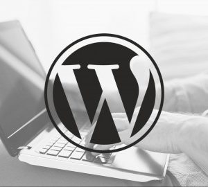 A Beginners Guide To Setting Up A WordPress Blog