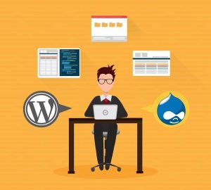 Step-by-Step Drupal 7 to Wordpress Migration