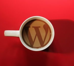 The Beginners Guide To Wordpress