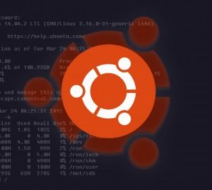 Ubuntu Linux Server Basics