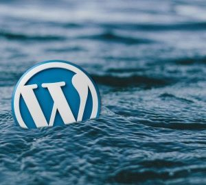 How to Migrate or Copy a WordPress Website?