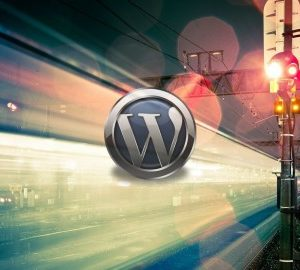 The WpFASTER WordPress Speed Optimization Master Course