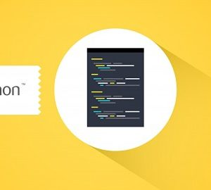 Python Programming for Beginners