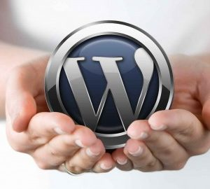 WordPress 4 For Beginners: How To Build An Amazing Site