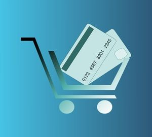 Learn Stripe PHP: Make Checkout Webpages