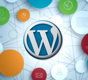 Install a Wordpress Theme the Correct Way & Charge Others