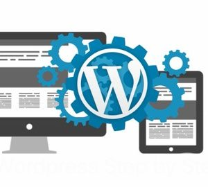 Learn How to Create Fast Websites With Wordpress.
