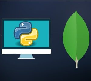Learn How Python Works with NoSql Database MongoDB: PyMongo