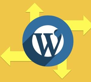 How to Create a WordPress Site That Works for You