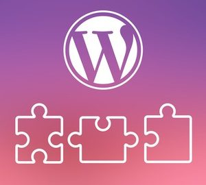 Wordpress Plugins that will transform your Website