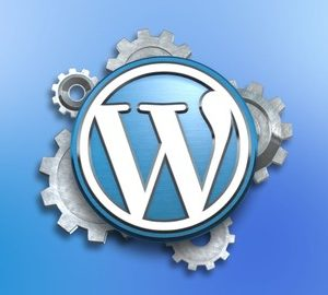 Blogger's Guide to WordPress Auto Blogging All Levels