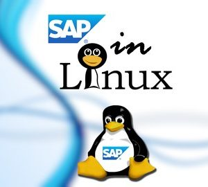 SAP - Installing and Configuring SAP in Linux