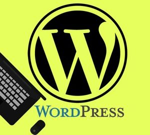WordPress essentials Step by Step setup and using Wordpress