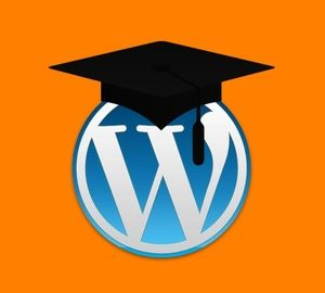 Wordpress Essentials: Installing Wordpress for Beginners