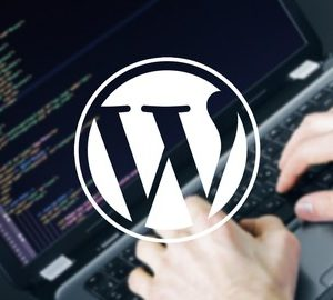 WordPress: Create an Amazing Website With Ease