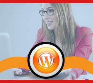 WordPress For Business: Build An Amazing Site From Scratch