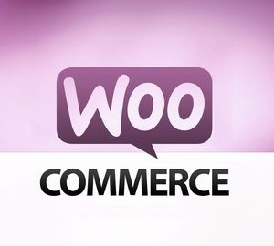 Learn How to Build an E-Commerce Website by WordPress