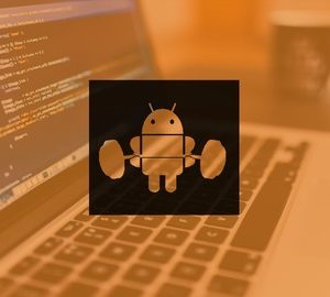 Beast Android Development: Parsing Json Data